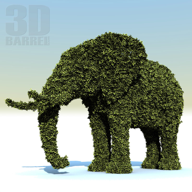3d bush elephant hedge
