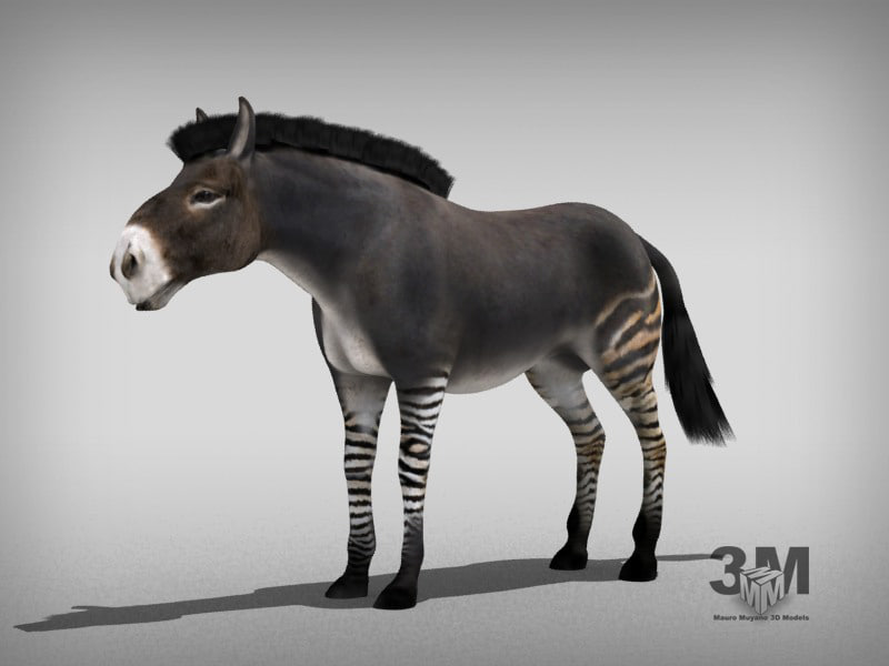 extinct 3d model