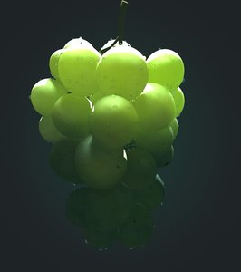 grapes subsurface scattering