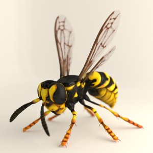 3ds wasp hornet