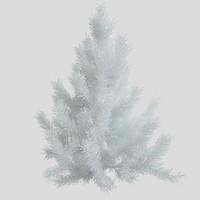 Pine tree white