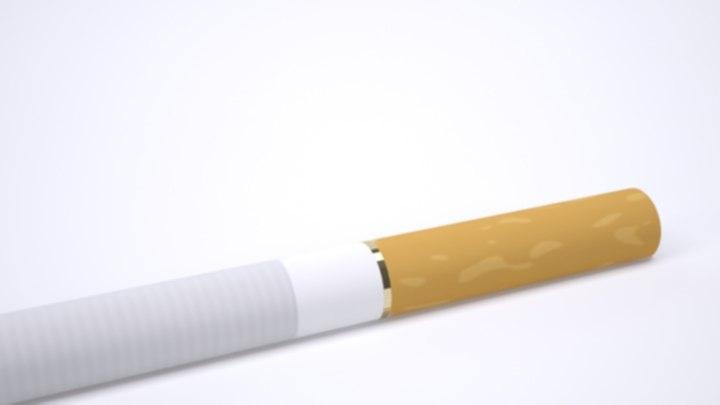cigarette cigar 3d max