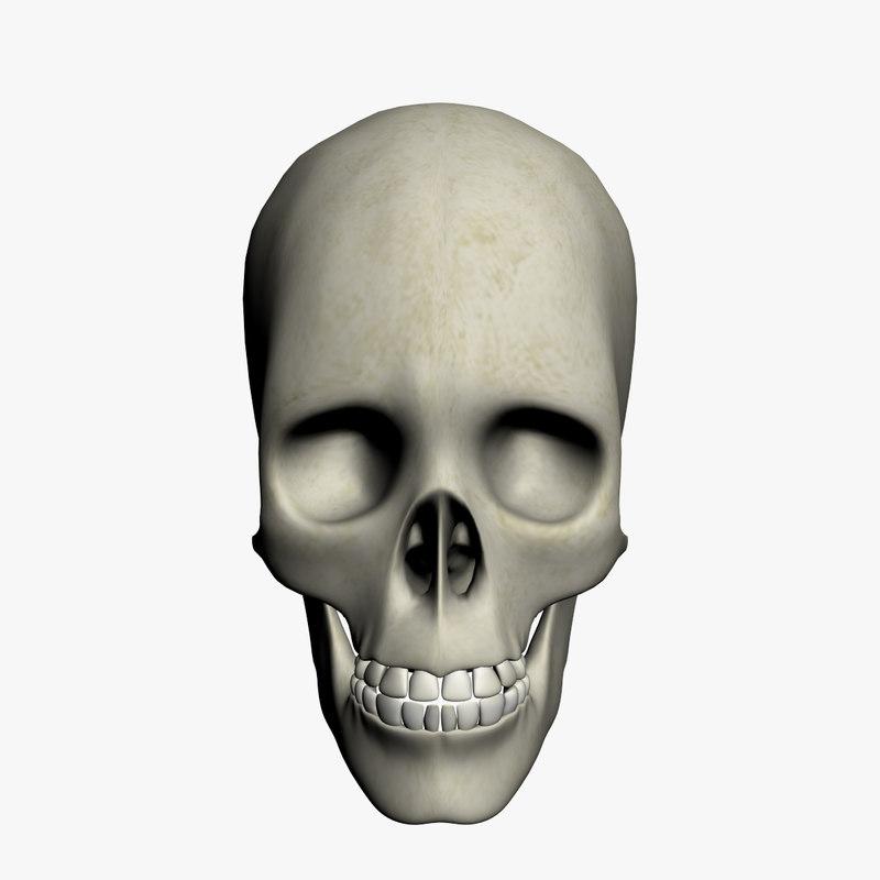 human skull 3d 3ds