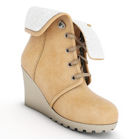 Female Winter Boots 01