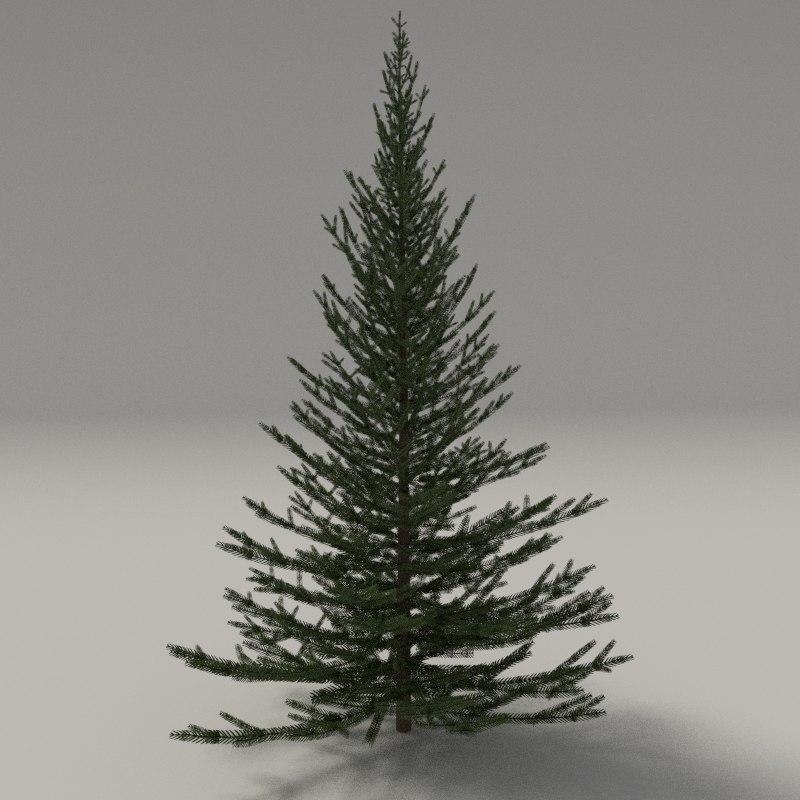 3d model firtree blender