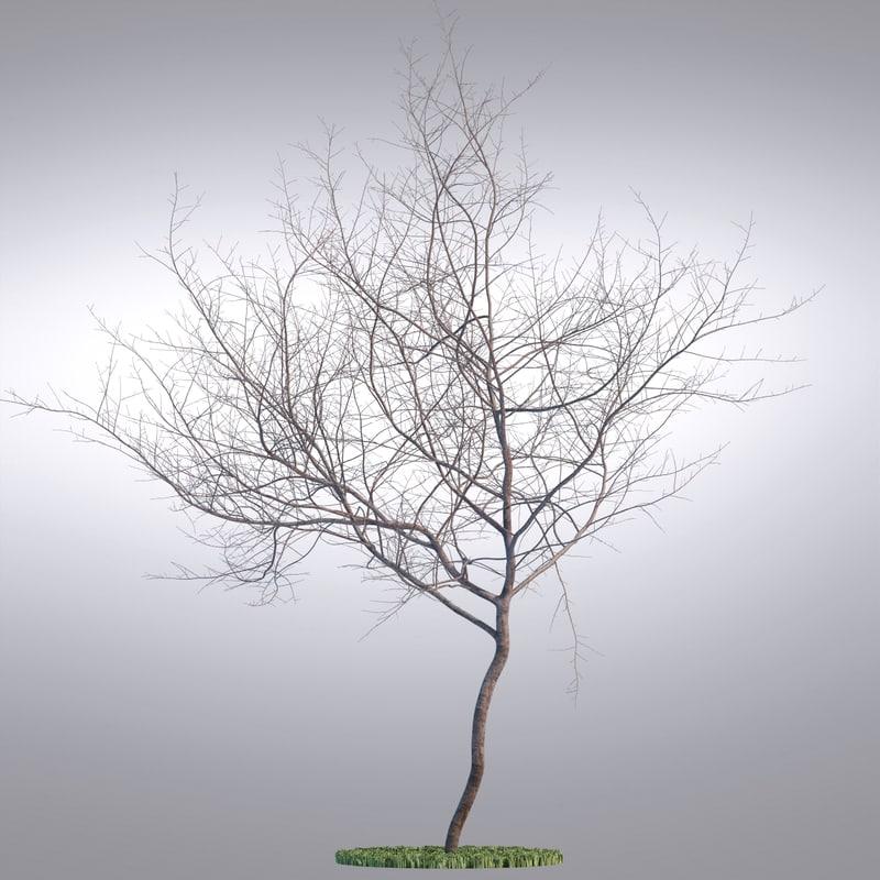 hi realistic series tree max