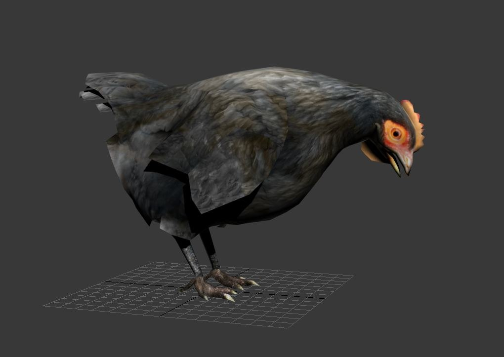 maya chicken rooster