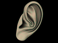 Low Poly Ear