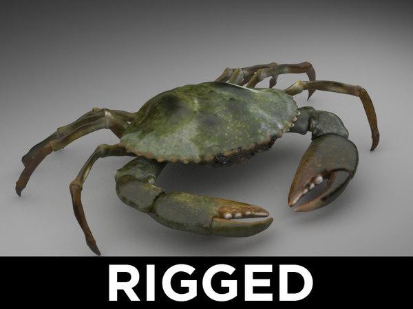 3d max crab rig