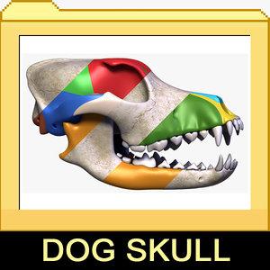 3d 3ds dog skull 1 2