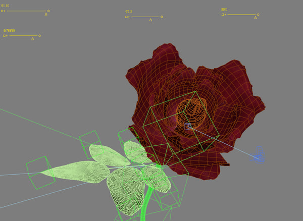 3d model rose animation