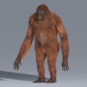 3d model hair orangutan