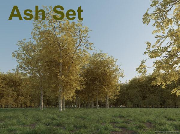 3d ash tree set