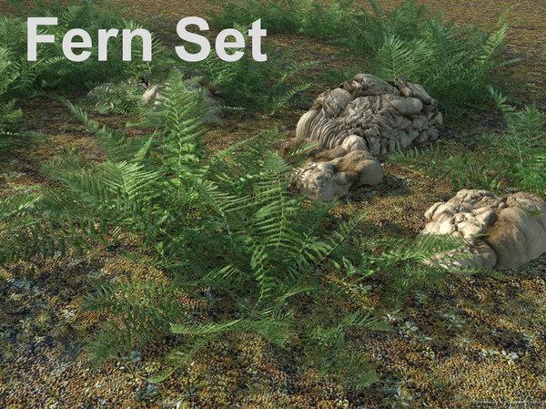 3d model ladyfern fern set