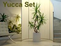 Yucca Set