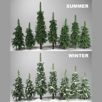 3d wild forest fir trees