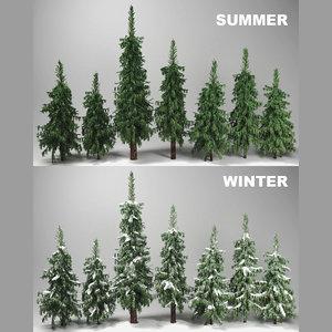 3d wild forest fir trees