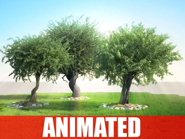 tree animation olea studio 3d obj