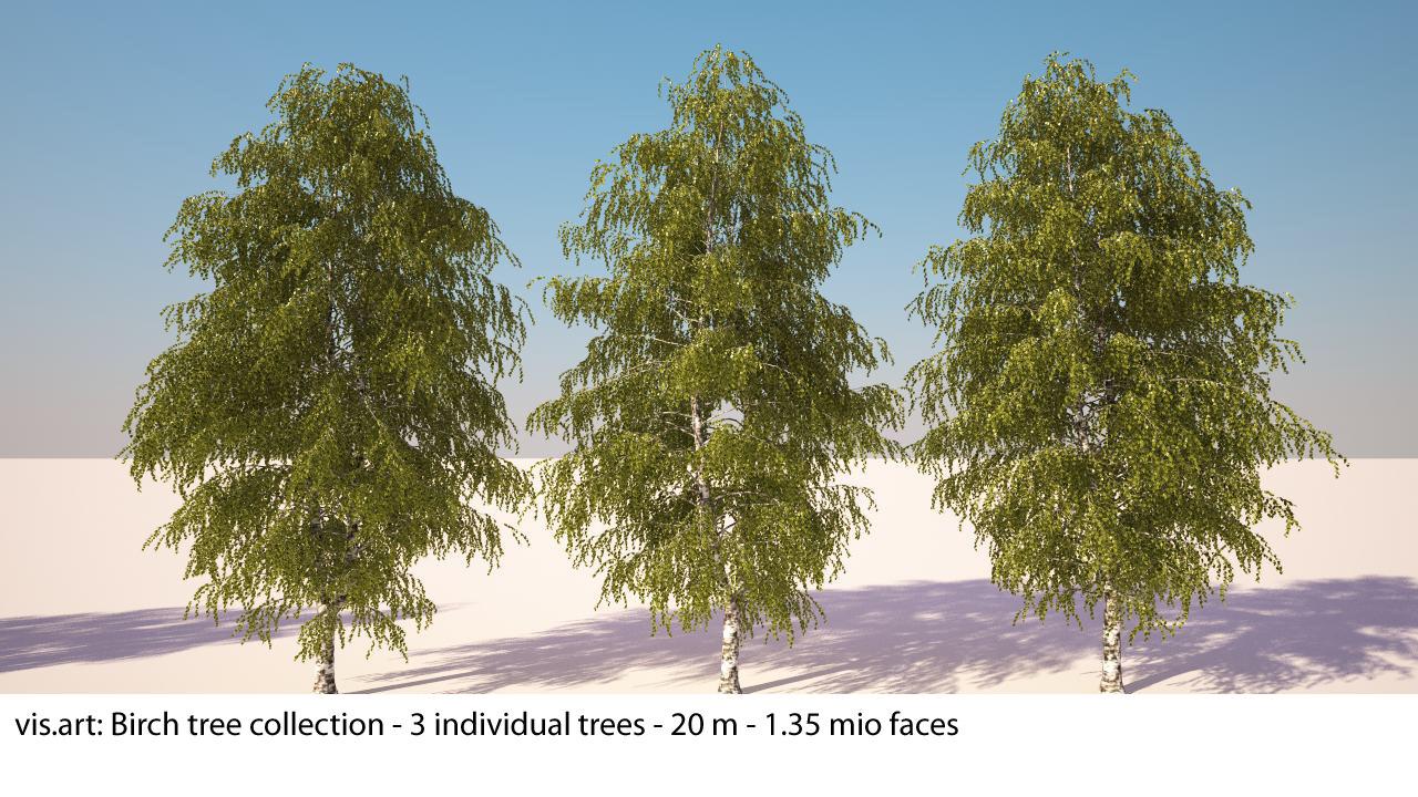 3dsmax birch trees
