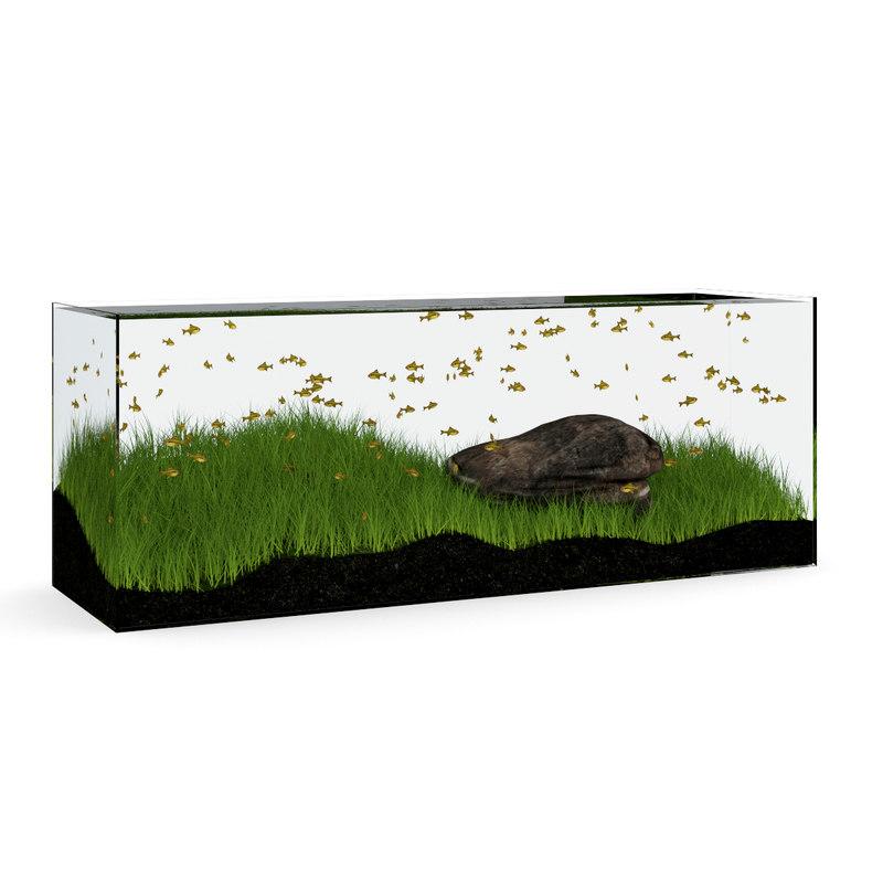 max aquarium rectangular