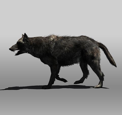 black wolf 3d 3ds