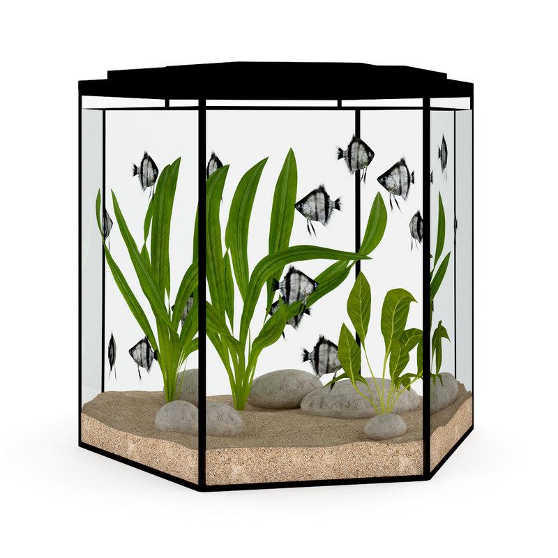 3d model aquarium hexagonal