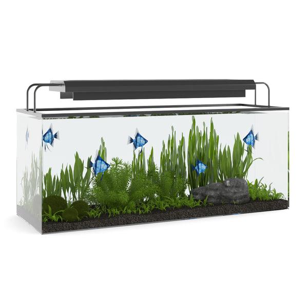 aquarium rectangular 3d max