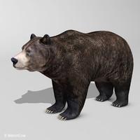 realistic brown 3d model