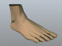 Low Poly Foot