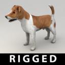 Terrier 3D models