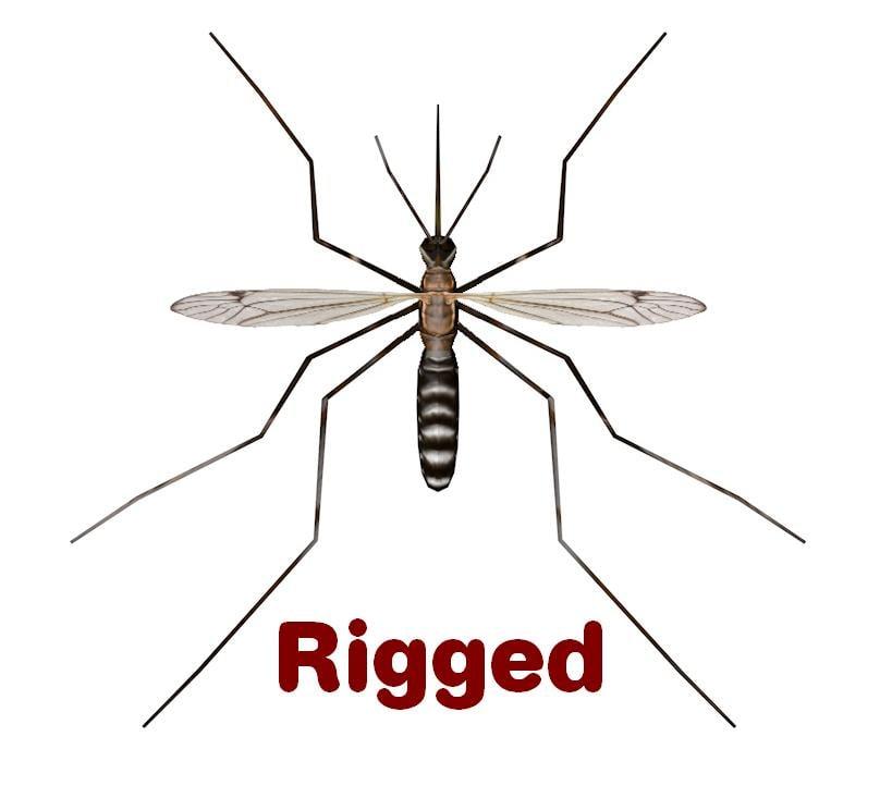 3d 3ds mosquito culex pipiens