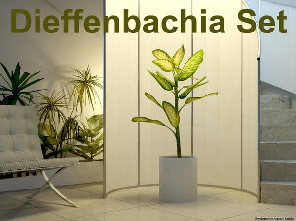 3d model dieffenbachia set