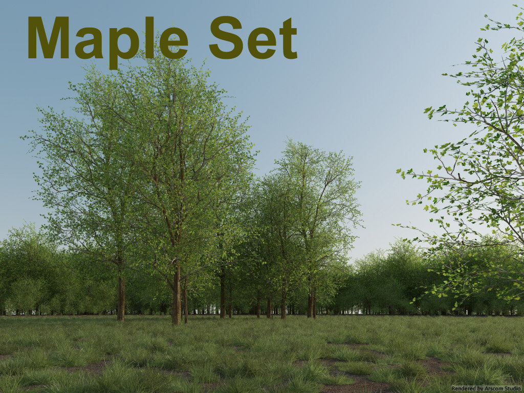 3ds max maple tree set