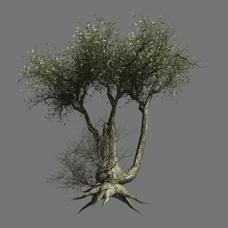 3ds hq olive trees