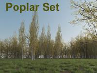 Poplar Set