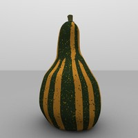 ornamental holiday gourd 3d model