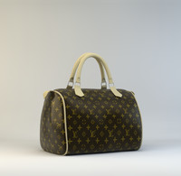 Luis Vuitton Bag