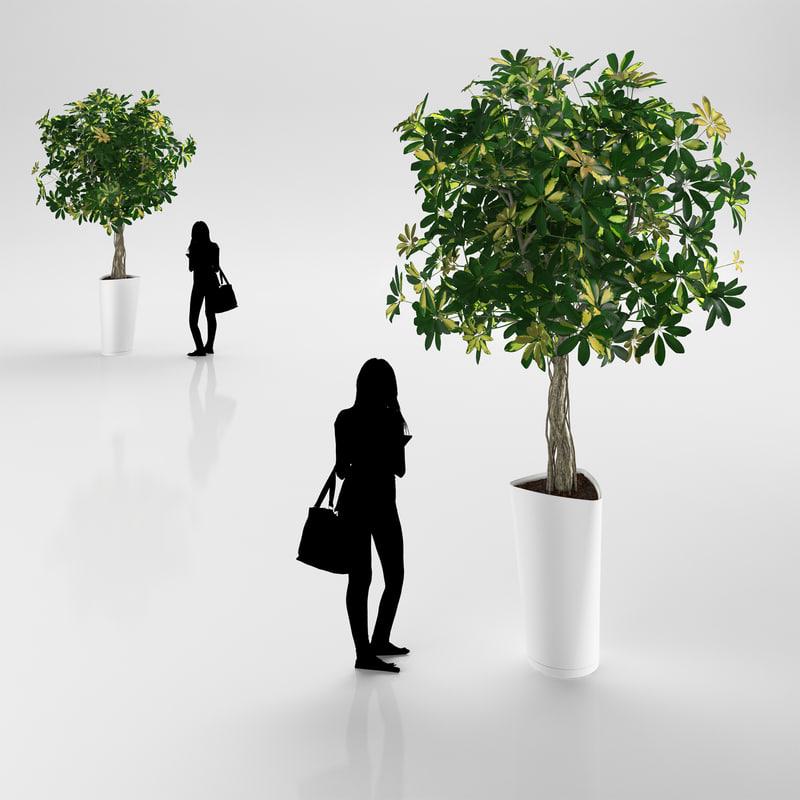 3ds max tree white pot