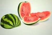 3d watermelon melon