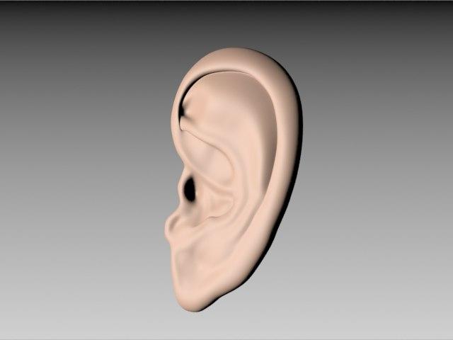 free model ear