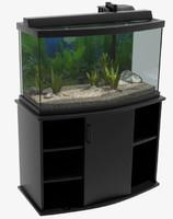 maya tank fishtank fish