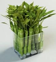 3d bamboo vase model