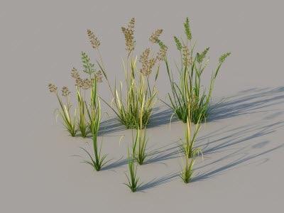3d model grass scattering