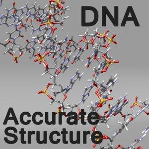 maya dna molecule