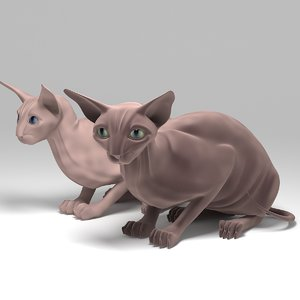 pedigree cats 3d model