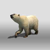 polar bear 3d 3ds