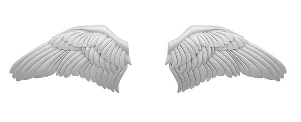 maya wings bird cupid