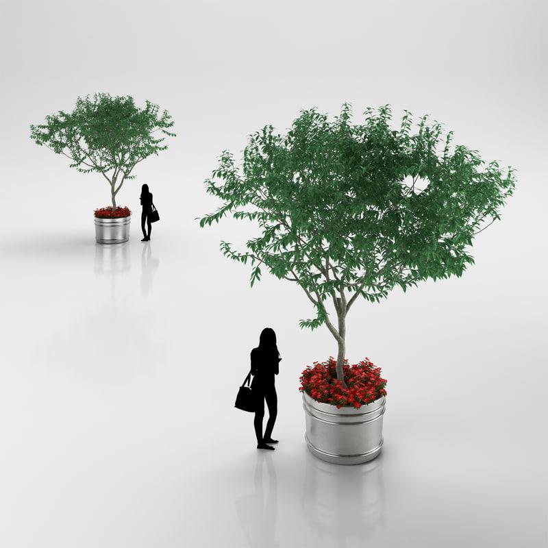 3d model tree pot