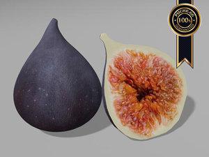 3d model fig