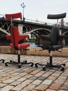 hag office chair 3d max